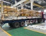 Expédition plate professionnelle de conteneur de crémaillère de Changhaï à dans le monde entier