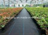 Crecer el control de Weed de la red que planta la estera, acoplamiento plástico de la cubierta de tierra del jardín