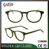 Het populaire Frame van het Schouwspel van het Oogglas Eyewear van de Acetaat In het groot Optische Sr6044