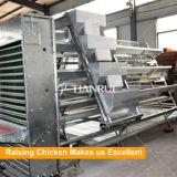 Volaille de Tianrui soulevant le matériel qu'un type poulet automatique d'oeufs mettent en cage