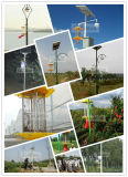과수원, 정원, 녹색 집에 있는 지적인 태양 유해물 살인자 램프