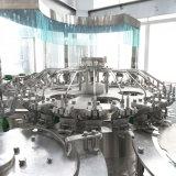 De Leverancier van China van het Vullen van de Drank van het Appelsap de Machines van de Verwerking