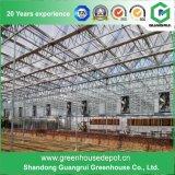 低価格の空によって絶縁される構築の緩和されたガラスの温室