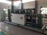 Compresor de refrigeración de la unidad paralela del tornillo de baja temperatura de Bitzer