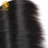 Cabelo humano do Virgin brasileiro natural por atacado da extensão do cabelo de Remy