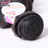 5A 브라질 Virgin Hair Deep Curly, 브라질 Remy Hair Extension, Wholesale Virgin Hair