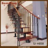 Escalera recta de interior elegante para el diseño del pasamano de la escalera (SJ-X1081)