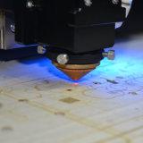 De Scherpe Machine van de Laser van Co2 voor het Embleem van het Product (PIL0806C)