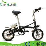 Rad-Minifalz-elektrisches Fahrrad der Lithium-Batterie-zwei