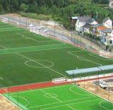 Equipamento plástico do futebol da esteira da grama artificial do futebol
