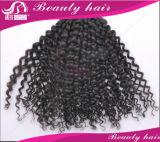 il tessuto brasiliano dei capelli di Ombre del Virgin 6A dei capelli di Ombre di estensioni brasiliane dei capelli impacchetta l'estensione dei capelli umani 3PCS molto delicatamente nessun groviglio