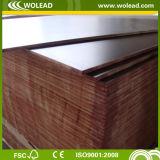 La película del grado de la primera clase hizo frente a la madera contrachapada para Shuttering de la construcción (w15100)