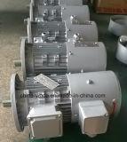 Motore di alluminio dell'invertitore di frequenza del blocco per grafici di Tefc
