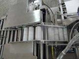 沸騰性のタブレットのラッパー機械(BSJ-40)