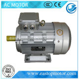 L$signora Asynchronous Motor per le centrali elettriche con lo statore dello Silicone-Acciaio-Strato