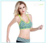 Qualitäts-Yoga-Büstenhalter-Eignung-Yoga-Kleidung