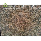 Granit de Giallo Fiorito pour des partie supérieure du comptoir