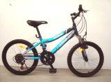 2014 الجيّدة يبيع جبل درّاجة ([متب-24دس])