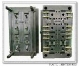 Electric Part (WEB-2010003)のためのベテランのHigh Precision Plastic Injection Mould