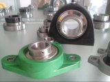 Stainless Steel Bearing Ucfl206를 가진 Fkd Plastic Housing
