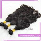 Tramas do cabelo na extensão romântica conservada em estoque do cabelo do anjo