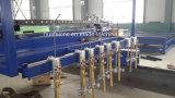 Tagliatrice guidata Singolo-Lato di CNC di Qgii di alta qualità