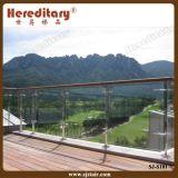أعلى درجة الفولاذ المقاوم للصدأ الدرابزين عن الدرج والشرفة (SJ-068)