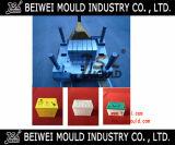 De plastic Vorm van de Container van de Batterij van de Injectie