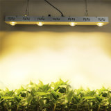 Dimmable 1.2mのクリー族Cxb3590 400Wの穂軸LEDは軽く完全なスペクトル48000lm成長するランプを育てる