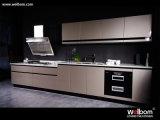 Armadio da cucina della lacca di alta qualità del nuovo modello di Welbom con la fine di morbidezza