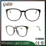 Optische Frame van het Oogglas Ultem Plastic Eyewear van de manier het Populaire met Slank Roestvrij staal B7052