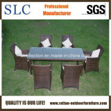 Gli stili differenti della regolazione della Tabella/Tabella di alluminio esterna impostano/Tabella di vimini impostata (SC-B9514)