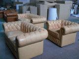 Sofà di cuoio di Seater America del lusso 1 (QS-2016)