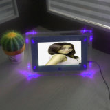 7inch Acrylic Digitla Photo Frame avec Light