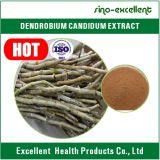صارّة [دندروبيوم] عشب [دندروبيي] مقتطف