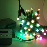 Ws2811ピクセルLED屋外の多彩なクリスマスの装飾妖精ストリングライト