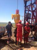 Dispositif pilotant d'au sol extérieur de la pompe de puits 30kw de pompe de vis de pétrole