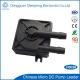 Pompe à l'eau 12V de bonne qualité pour la circulation de refroidissement de l'équipement