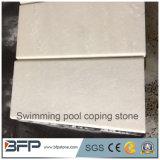 Het witte Geslepen Marmer beëindigt het Volledige Het hoofd bieden van het Zwembad Bullnose