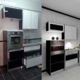 Chaud-Vente du Module de cuisine de laque de modèle neuf