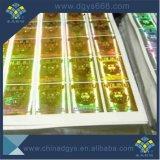 De Holografische Zelfklevende Sticker van de laser met het Ontwerp van de Douane