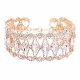 Способ ожерелья диаманта Амазонкы цветет полная цепь ожерелья диаманта
