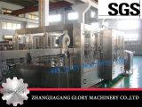 Divers Liquid Machine de remplissage pour le jus chaud