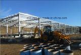 Edificio estructural de acero Jdcc1025 del almacén del bajo costo