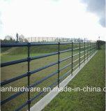 China-australischer galvanisierter Vieh-Yard-Panel-Standardgrossist