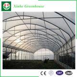 トンネルのフィルムの温室の成長するドームの温室