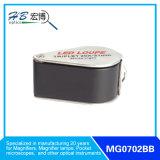 Magnifier dei monili di 20X18mm