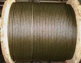 Emballage personnalisé par 6X19s+FC noir de corde de fil d'acier