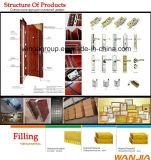 Guichet Shool Using la porte en acier de garantie extérieure en métal de fer (W-S-114)