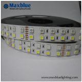 El precio bajo DC12V impermeabiliza 3528 luz de tira de 5050 LED
